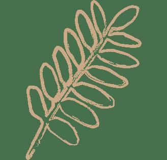 drawn-leaf